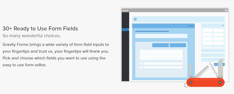 30+ Ready to Use Form Fields